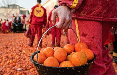 Secchio di arance al Carnevale di Ivrea